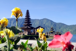 Bali Day Tours to Bedugal